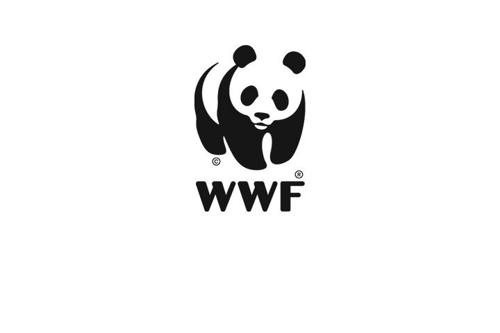 WWF Case Study