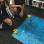 Social issue makerspace activity - Australian migrants, introducing beach culture